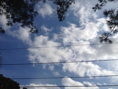 20121027-135013.jpg